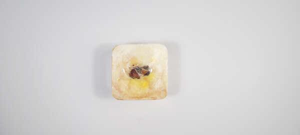Snowy Rose Patchouli Goat Milk Soap